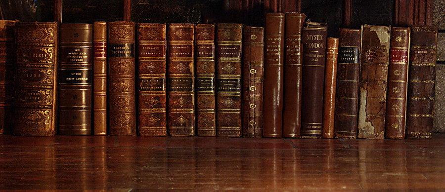 http://london.after.midnight.cowblog.fr/images/booksinarowbybarefootliam.jpg